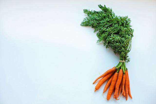 L'huile de carotte